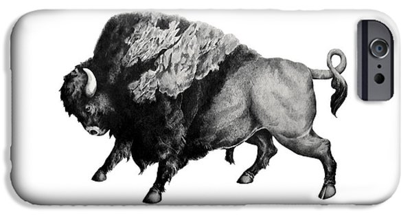 Photorealistic iPhone Cases - Bison iPhone Case by Alexander M Petersen