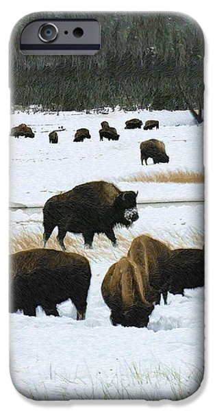 Bison Cows Browsing iPhone Case by Kae Cheatham