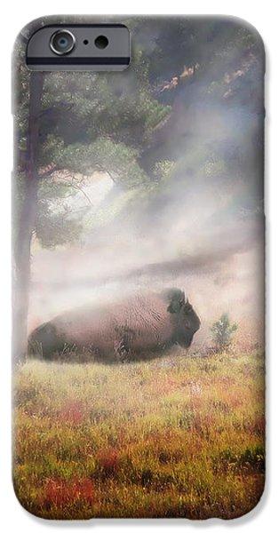 Bison Dust Bath iPhone Case by Terril Heilman