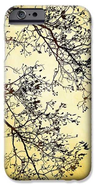 Rollo Digital Art iPhone Cases - Black And Gold Tree iPhone Case by Christina Rollo