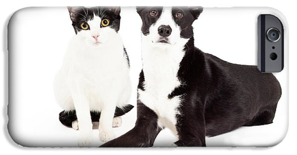Mutt iPhone Cases - Black and White Cat and Dog iPhone Case by Susan  Schmitz