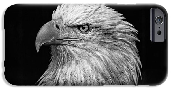 Killer B iPhone Cases - Black and White Eagle D2687 iPhone Case by Wes and Dotty Weber