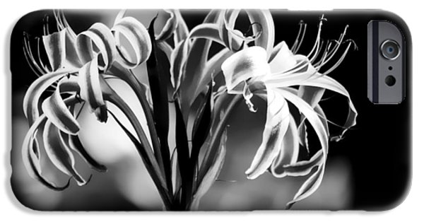 Bloosom iPhone Cases - Black And White Lilly  iPhone Case by Debra Forand