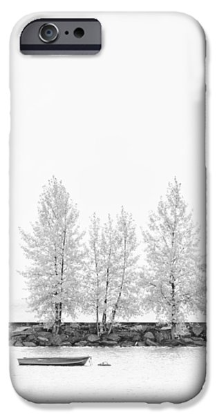Autumn iPhone Cases - Black and White Tree  iPhone Case by Ulrich Schade