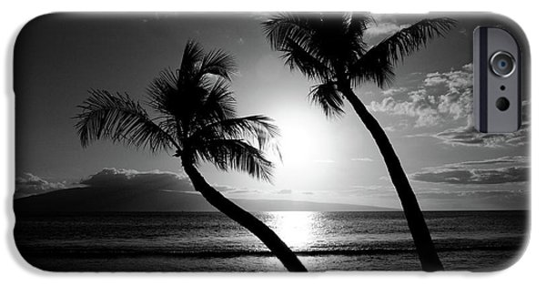 Palm Tree iPhone Cases - Black and White tropical iPhone Case by Pierre Leclerc Photography