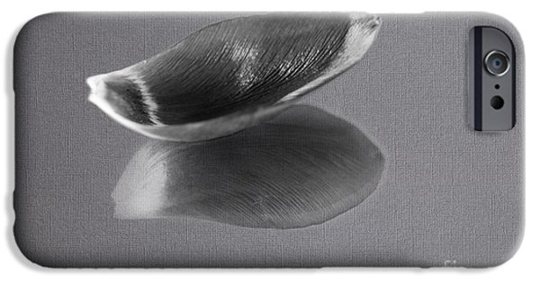Balck Art iPhone Cases - Black and White Tulip Petal iPhone Case by Eden Baed