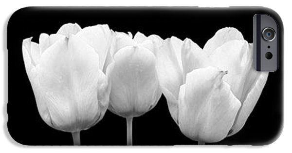 Monotone iPhone Cases - Black And White Tulip Triptych iPhone Case by Gill Billington