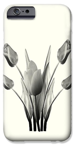 Business iPhone Cases - Black and White Tulips Drawing iPhone Case by David Dehner