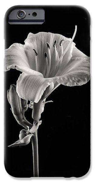 Black and White iPhone Case by Yasar Ugurlu