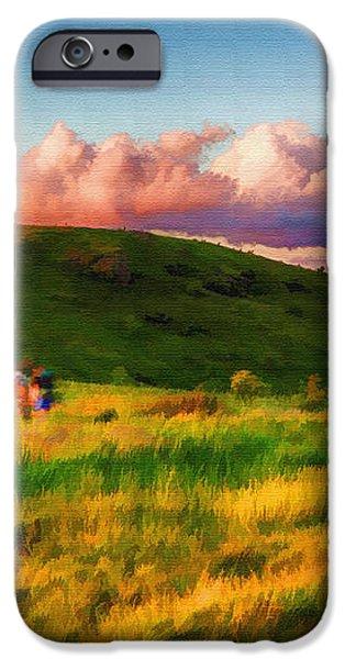 Black Balsam Hikers iPhone Case by John Haldane