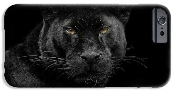 Wild Animals Pyrography iPhone Cases - Black beauty iPhone Case by Gea Strucks