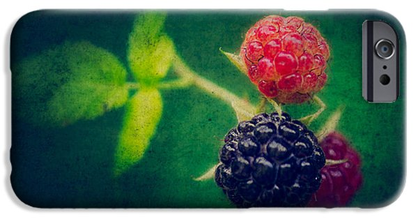 Black Berries iPhone Cases - Black Berry with Texture iPhone Case by Todd Bielby