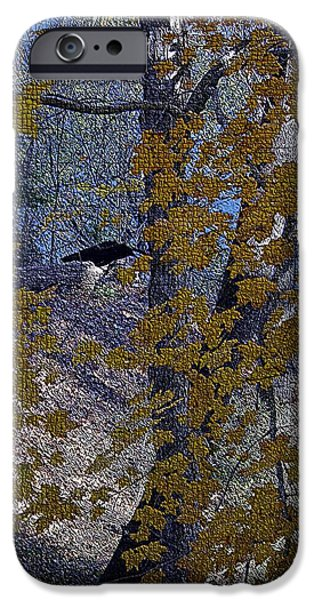 Blackbird Tapestries - Textiles iPhone Cases - Black Bird in Autumn Tree iPhone Case by Thia Stover