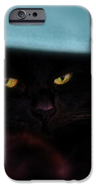 Black Cat Secrets iPhone Case by Bob Orsillo