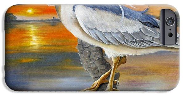 River Jordan Paintings iPhone Cases - Black Crowned Night Heron At The Jordan iPhone Case by Phyllis Beiser