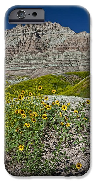 Balck Art iPhone Cases - Black-Eyed Susan Flowers in the Badlands iPhone Case by Randall Nyhof