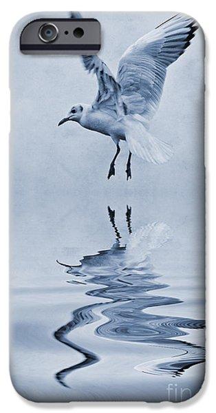 Sea Birds iPhone Cases - Black headed gull cyanotype iPhone Case by John Edwards