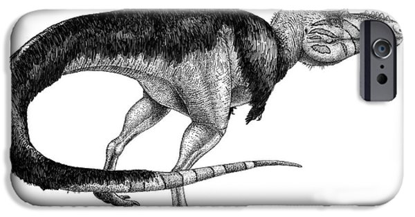 Pen And Ink iPhone Cases - Black Ink Drawing Of Alioramus Remotus iPhone Case by Vladimir Nikolov