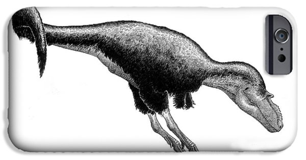 Pen And Ink iPhone Cases - Black Ink Drawing Of Gorgosaurus iPhone Case by Vladimir Nikolov