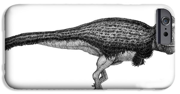 Pen And Ink iPhone Cases - Black Ink Drawing Of Tyrannosaurus Rex iPhone Case by Vladimir Nikolov