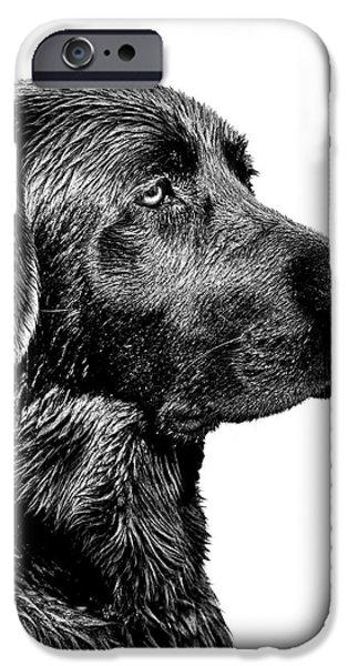 Animals Photographs iPhone Cases - Black Labrador Retriever Dog Monochrome iPhone Case by Jennie Marie Schell
