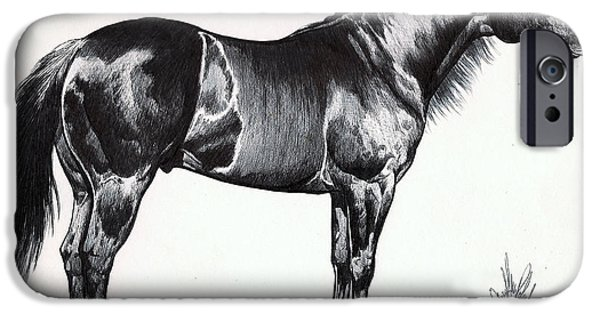 Drawing Of A Horse iPhone Cases - Black Quarter Horse iPhone Case by Cheryl Poland