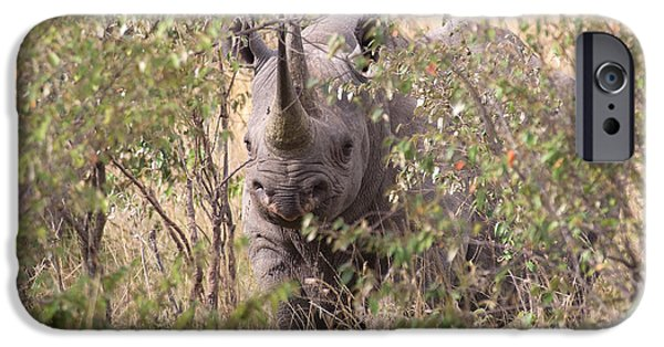 Rhinocerus iPhone Cases - Black Rhino  iPhone Case by Chris Scroggins