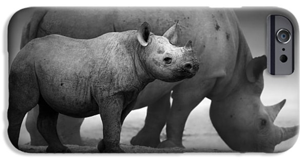 Monotone Photographs iPhone Cases - Black Rhinoceros baby and cow iPhone Case by Johan Swanepoel