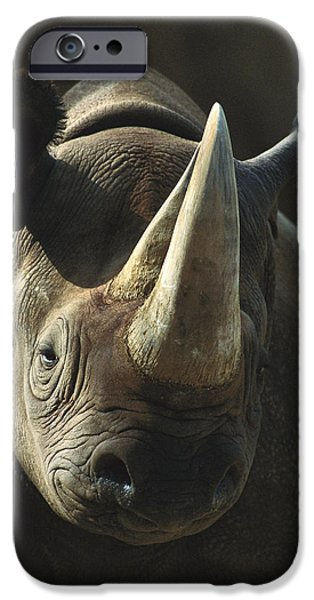 Lips iPhone Cases - Black Rhinoceros Portrait iPhone Case by San Diego Zoo