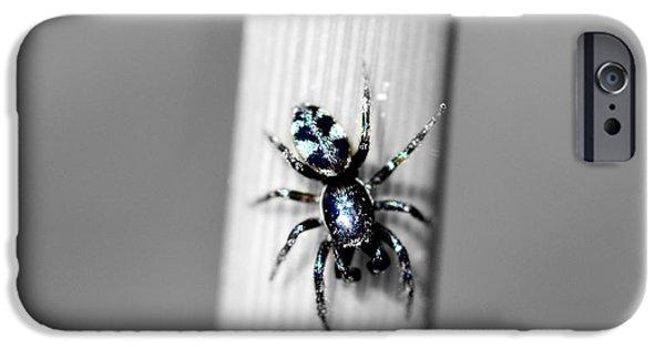 Copy Mixed Media iPhone Cases - Black spider in black and white iPhone Case by Toppart Sweden