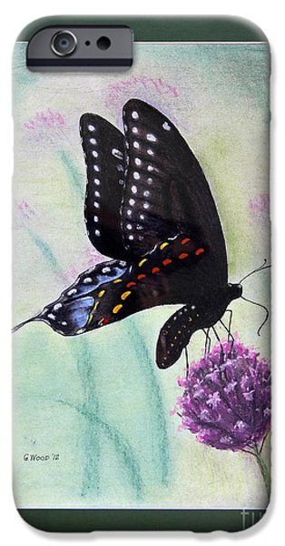 Fauna Pastels iPhone Cases - Black Swallowtail Butterfly by George Wood iPhone Case by Karen Adams