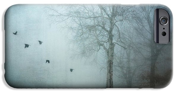 Crows iPhone Cases - Blackbirds In Fog iPhone Case by HD Connelly