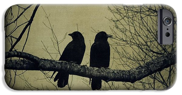 Creative Blackbird iPhone Cases - Blackbirds on a Branch iPhone Case by Patricia Strand