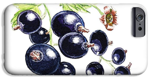 Nature Study Paintings iPhone Cases - Blackcurrant Berries  iPhone Case by Irina Sztukowski
