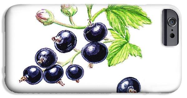 Nature Study iPhone Cases - Blackcurrant Botanical Design iPhone Case by Irina Sztukowski