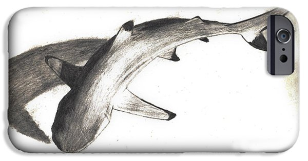Shark Drawings iPhone Cases - Blacktip on the Prowl iPhone Case by Rebecca Brown