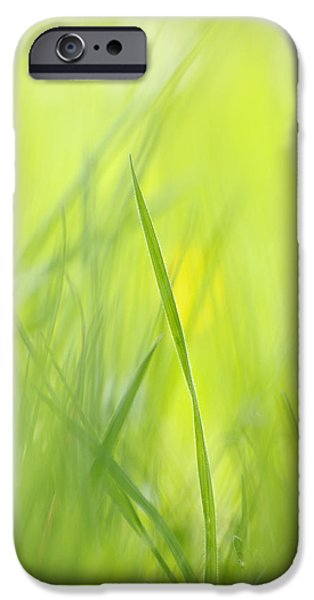 Nature Abstracts iPhone Cases - Blades of grass - green spring meadow - abstract soft blurred iPhone Case by Matthias Hauser