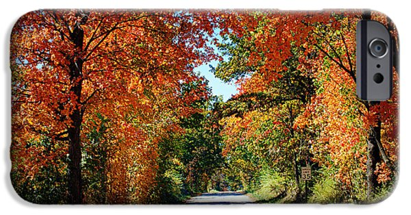 Country Road iPhone Cases - Blaze of Glory iPhone Case by Cricket Hackmann