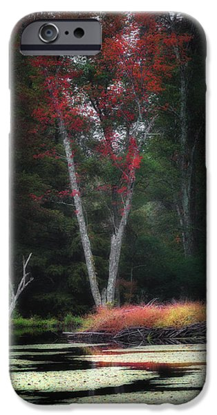 Lilly Pads iPhone Cases - Blazing Beaver Hut iPhone Case by Bill  Wakeley