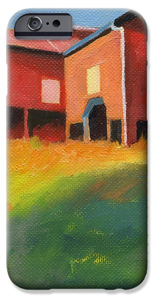 Bleak House Plantation Barn at Sunset iPhone Case by Catherine Twomey