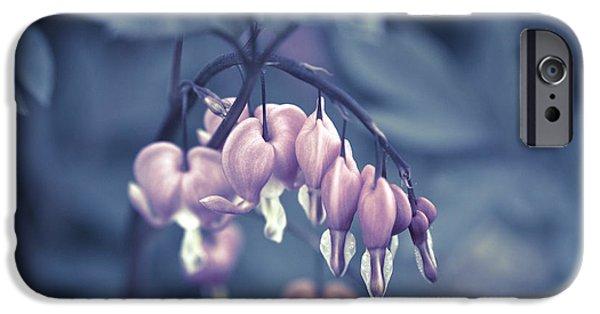 Bleeding Hearts iPhone Cases - Bleeding Heart Flower iPhone Case by Frank Tschakert
