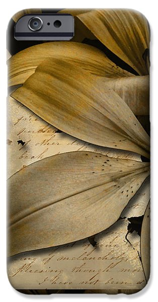 Bliss II iPhone Case by Yanni Theodorou