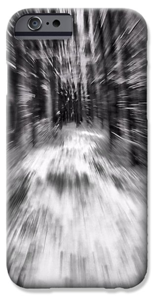Blizzard In The Forest iPhone Case by Dan Sproul