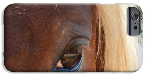 American Saddlebred Art iPhone Cases - Blondes DO Have More Fun 2 iPhone Case by Barbara Dalton