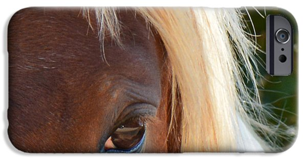 American Saddlebred Art iPhone Cases - Blondes DO Have More FUN iPhone Case by Barbara Dalton