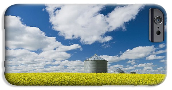Dave iPhone Cases - Bloom Stage Mustard Field And Grain Bin iPhone Case by Dave Reede