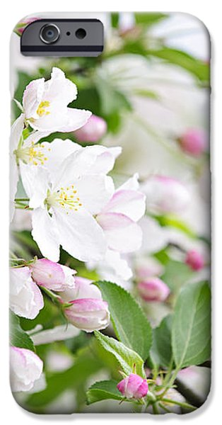 Blooming apple tree iPhone Case by Elena Elisseeva