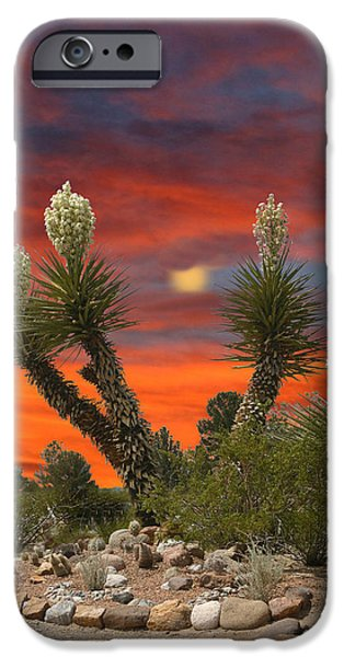 Stretched Canvas iPhone Cases - Yucca in full bloom iPhone Case by Jack Pumphrey