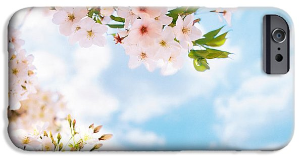 Altered iPhone Cases - Blossoms Against Sky, Selective Focus iPhone Case by Panoramic Images