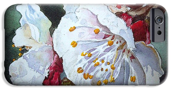 Apricots iPhone Cases - Blossoms iPhone Case by Irina Sztukowski